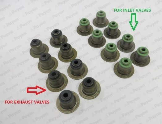 FORD Valve Stem Seal Payen 1206655 1S7G6A517BG Genuine Top Quality Replacement