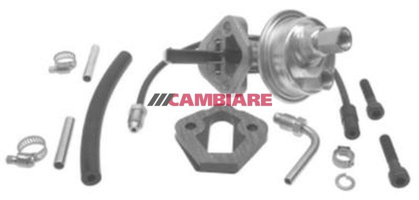 VE523154 Fuel pump fits for D